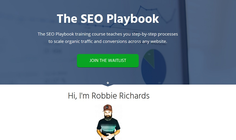 the seo playbook review